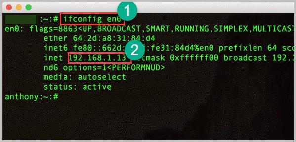 Поиск IP адреса в Mac OS