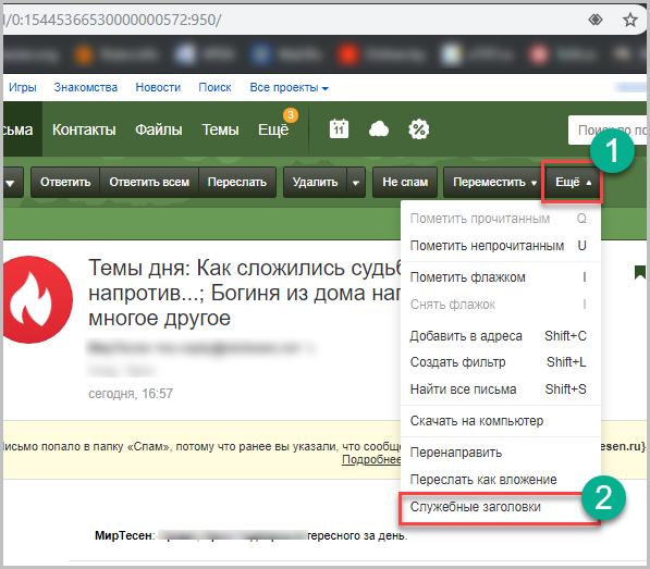 Служебные заголовки в панели Mail.ru