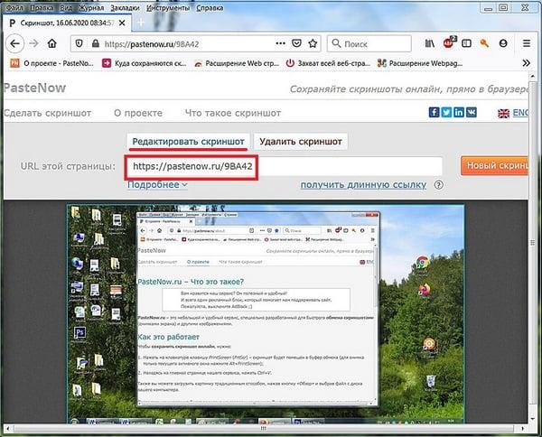 Получение адреса скриншота в PasteNow